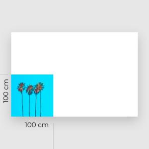 rigido 100x100 xlarge 2 300x300 1